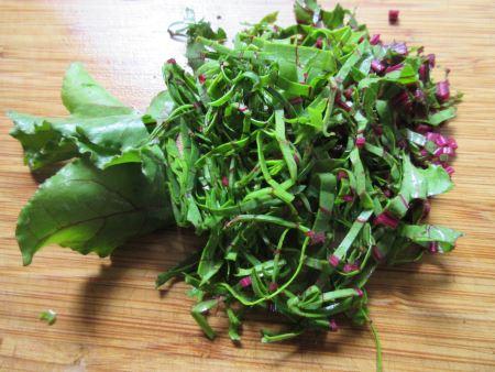 beet green