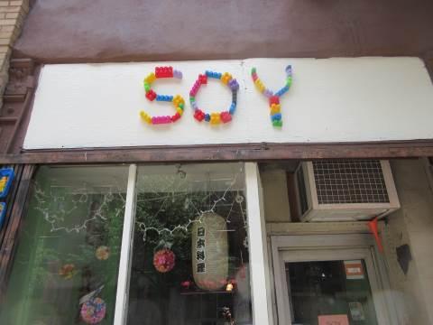 SOY blocks